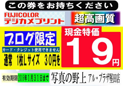 19円ブログ限定-特招会.jpg